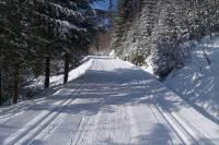 Warunki na trasach 13 lutego 2020 [RAPORT]