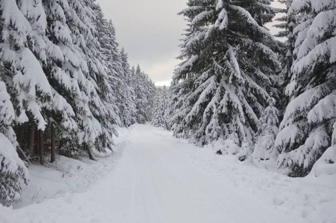 Zima na dobre zagościła w Górach Bialskich