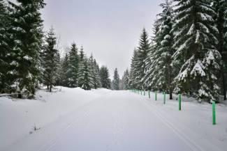 Warunki na trasach 4 stycznia 2018 [RAPORT]