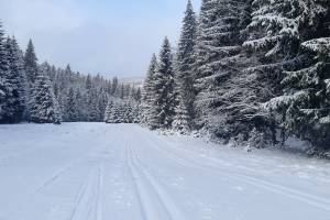 W Górach Bialskich panują obecnie jedne z najlepszych warunków na biegówki w kraju.