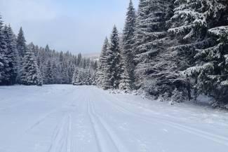 Warunki na trasach 7 stycznia 2021 [RAPORT]