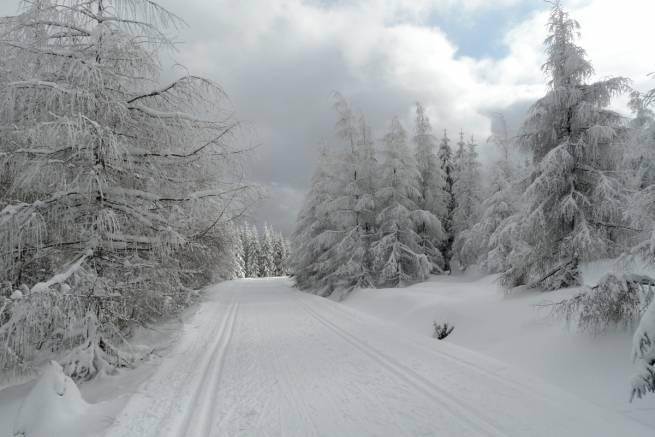 Trasa biegowa w Jakuszycach 2 lutego 2015