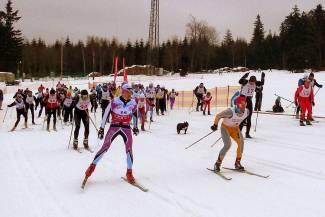 I Bieg Narciarski Jagodna 2016, czyli jak zrobić zawody w kilka dni