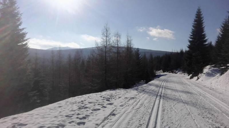 Jakuszyce jako jedyne w Polsce oparły się odwilży,  a na trasach wciąż są doskonałe warunki.