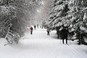 Jakuszyce - 28 grudnia 2017 roku