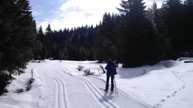 W Górach Bialskich można liczyć na przygotowane trasy biegowe.