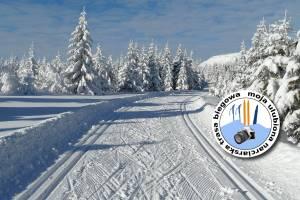 Opisz swoją narciarską trasę biegową i wygraj narty, kije, akcesoria [KONKURS]