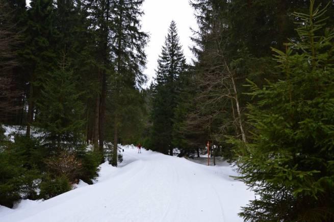 Góry Bialskie jeszcze nie dają za wygraną i zapraszają narciarzy.