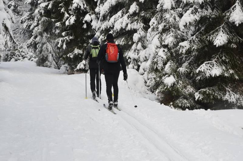 """Zdjęcie zrobione w czwartek w Bielicach (Góry Bialskie)  koło rezerwatu przyrody """"Puszcza Śnieżnej Białki"""""""