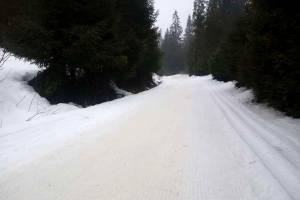 Obidowa to jedyna trasa w polskich Karpatach, gdzie zachował się naturalny śnieg,  a trasy są ratrakowane regularnie
