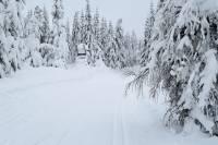 Warunki na trasach 17 stycznia 2019 [RAPORT]