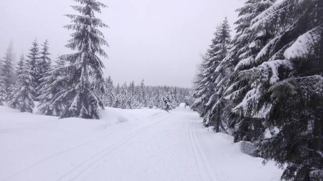 W Jakuszycach nadal trwa zima