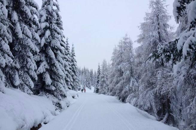 W Jakuszycach już najprawdziwsza zima.
