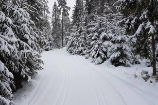 Warunki na trasach 11 lutego 2021 [RAPORT]