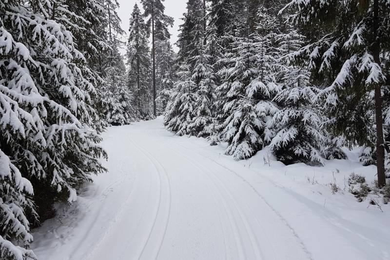W Nowym Targu wymarzone warunki do biegania na nartach