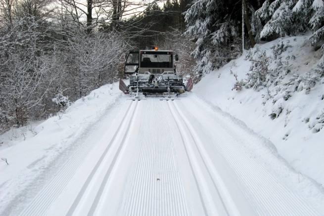 Pierwsze ślady w Górach Bialskich i Masywie Śnieżnika