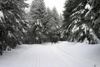 Warunki na trasach 9 lutego 2017 [RAPORT]