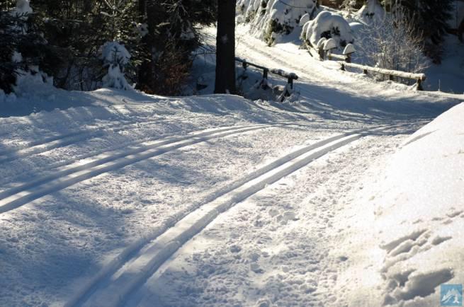 Opłata za trasy biegowe na Turbacz. Czy Obidowa przeciera szlaki?