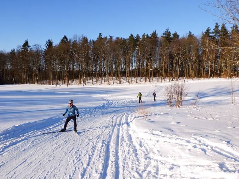 Biegówki na nizinach: Cartusia SkiArena Nordic na Kaszubach