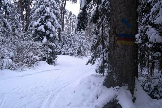 Trasy narciarskie na urokliwym Podlasiu - Uroczysko Glinki w Supraślu