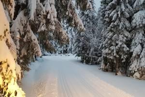 Na trasach Pod Mogielicą warunki bajeczne