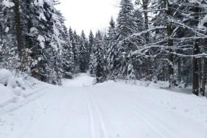 W Bieszczadach wciąż mróz - zdjęcie przedstawia trasy z Ustjanowej.