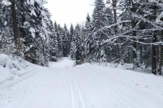 Warunki na trasach 18 lutego 2021 [RAPORT]
