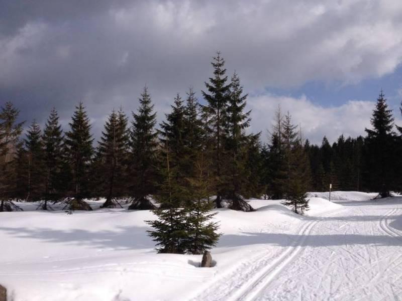 W Jakuszycach panują obecnie najlepsze warunki do biegania na nartach