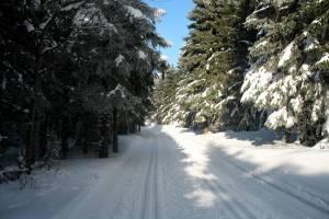 W Górach Bialskich i Masywie Śnieżnika narciarze mają do dyspozycji łącznie nawet ponad 200 km tras
