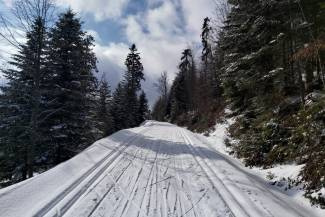 Warunki na trasach 18 marca 2021 [RAPORT]