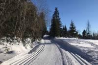 Warunki na trasach 16 stycznia 2020 [RAPORT]