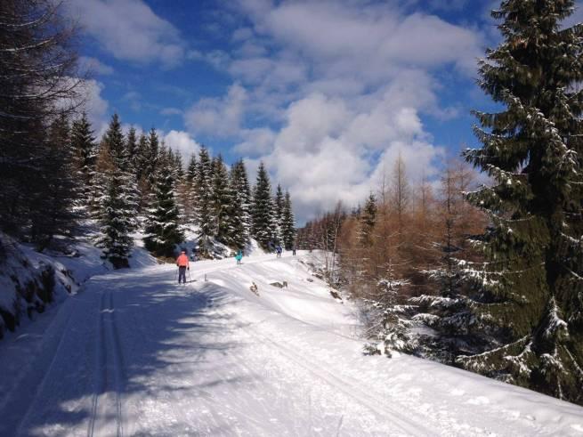 W Jakuszycach dobre warunki dla narciarzy biegowych