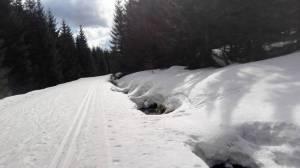 W czwartek 5 kwietnia w Jakuszycach ciągle dużo śniegu
