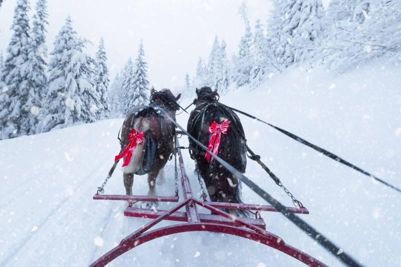 Czy uda się uratować biegową trasę narciarską z Obidowej na Turbacz?