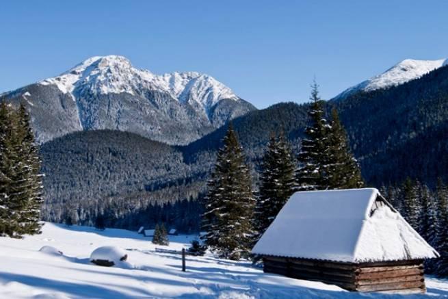 Kościelisko chce mieć trasy i bieg narciarski wzorem Jakuszyc