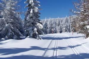 Zima trwa w najlepsze. Na trasach SGB Ultrabiel piękne warunki.