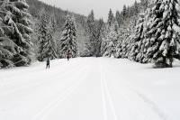 Po raz pierwszy organizujemy kurs narciarski w Górach Bialskich