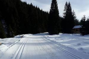 W polskich Karpatach wciąż dobre warunki panują w Obidowej