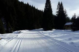 Warunki na trasach 25 stycznia 2018 [RAPORT]