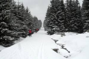 Na trasach biegowych w Jakuszycach coraz więcej śniegu i stabilniejsze warunki.