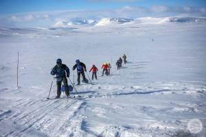 Laponia: na biegówkach w krainie Saamów