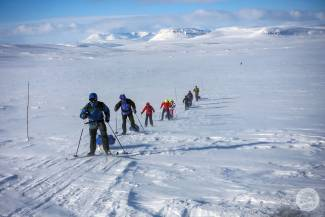 Wyprawy na biegówkach w Finlandii i Rosji w zasięgu ręki