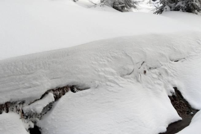 Pokrywa śnieżna w Górach Izerskich 31 grudnia 2011