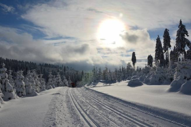 Trasy w Górach Rychlebskich