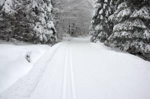 Trasy biegowe w Górach Bialskich zapraszają narciarzy w plener