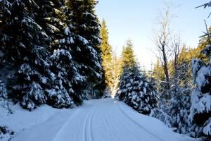 Góry Bialskie w czwartek 22 grudnia