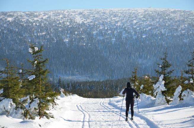 W Górach Bialskich i Masywie Śnieżnika przybyło nawet 20 cm śniegu