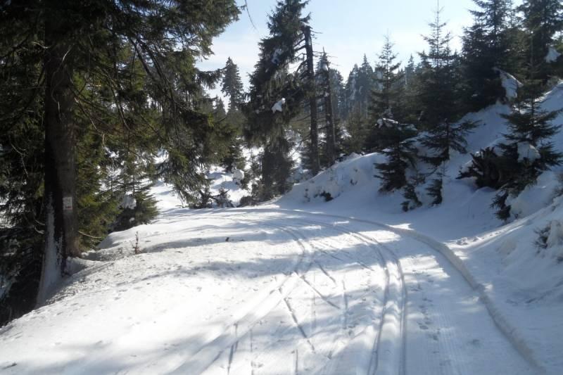 Zdjęcie wykonane na trasach w Górach Bialskich 18 marca 2016 roku. Na większych wysokościach śnieg utrzymuje się długo.