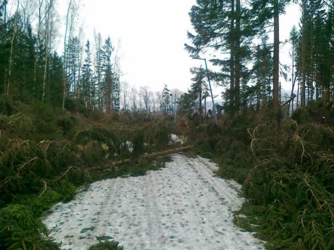W Dusznikach-Zdroju można co najwyżej pobiegać przez przeszkody