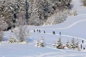 Biwaki narciarskie na Hali Boraczej (na zdjęciu) były natchnieniem do stworzenia kolejnych tras w Beskidzie Żywieckim